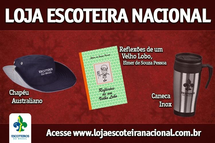 Sempre Alerta Eletrônico - 12ª Edição - Dezembro de 2012 8ebc5c41fb0