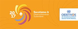 temaanual2017_capasfb_laranjaclaro_thumb